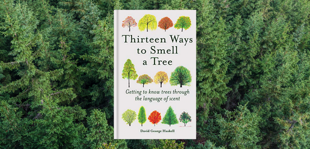 Thirteen Ways to Smell a Tree